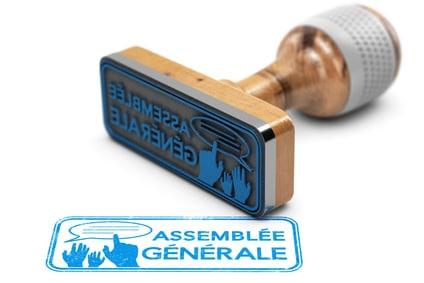 Nomination illégale d'un Commissaire aux comptes ne figurant pas dans la résolution adressée avec l'ordre du jour