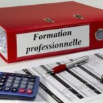 Absence de formation professionnelle